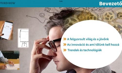 Ellenőrzési funkció új környezetben: online ügyintézés, digitalizáció